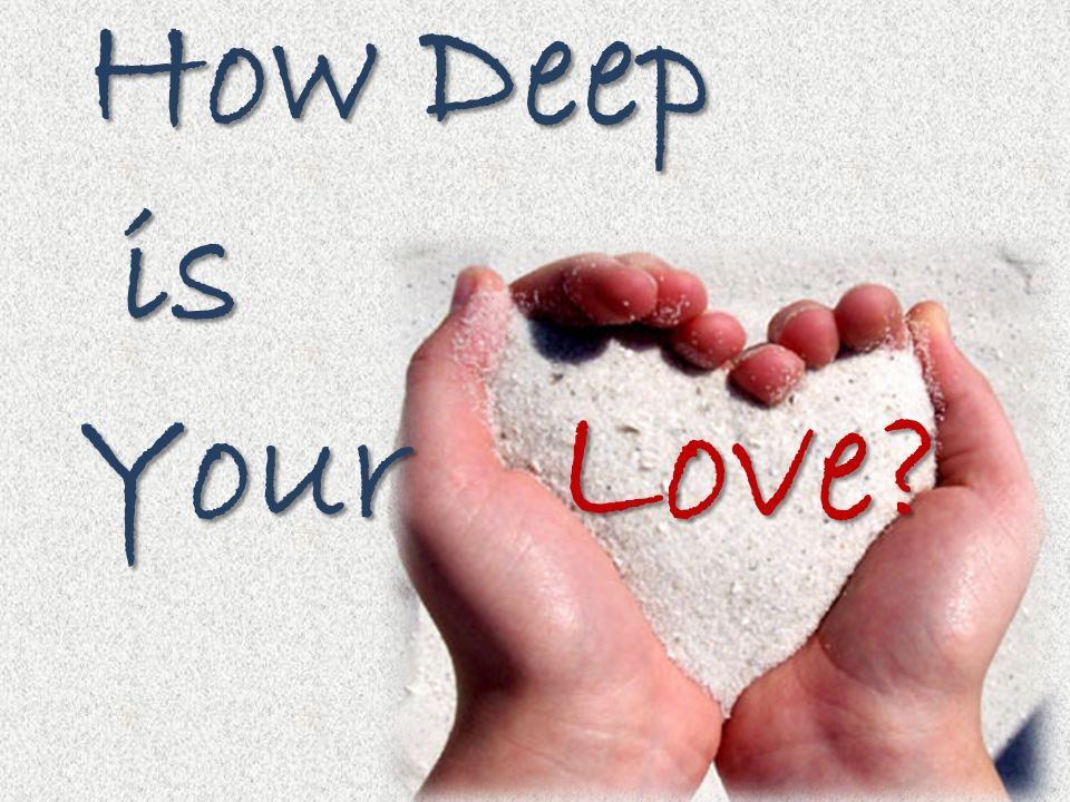 How Deep How Deep is is Your Your Love?