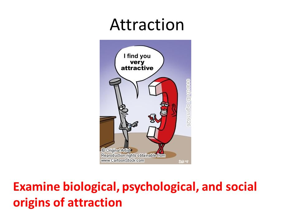 Attraction Examine biological, psychological, and social origins of attraction