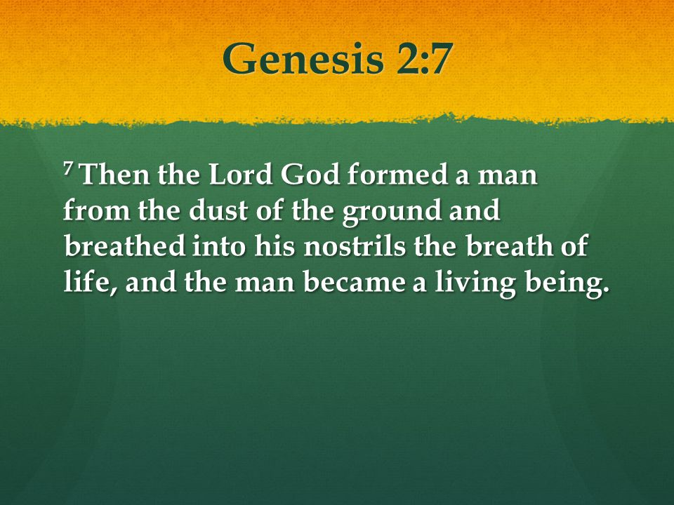 John 1:14 14 The Word became flesh and made his dwelling among us.