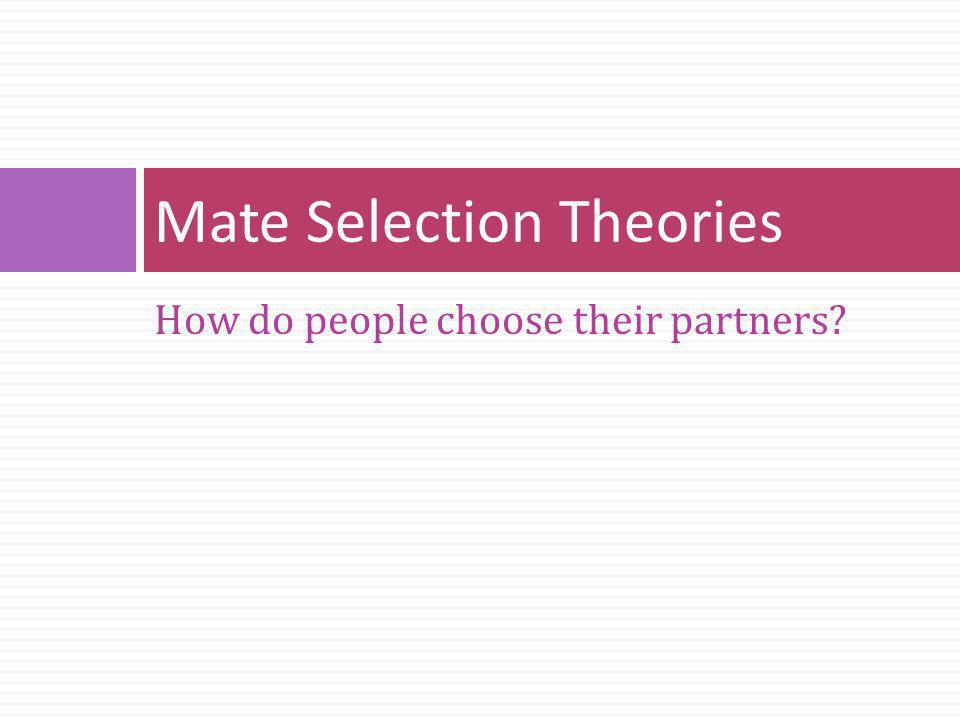How do people choose their partners? Mate Selection Theories
