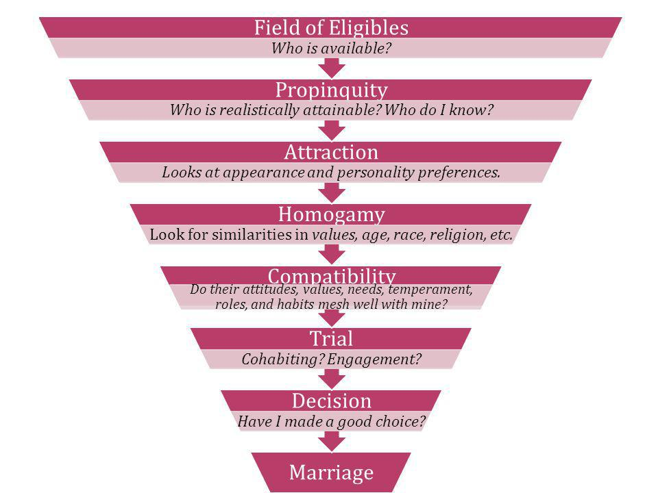 Marriage Decision Have I made a good choice? Trial Cohabiting? Engagement? Compatibility Do their attitudes, values, needs, temperament, roles, and ha