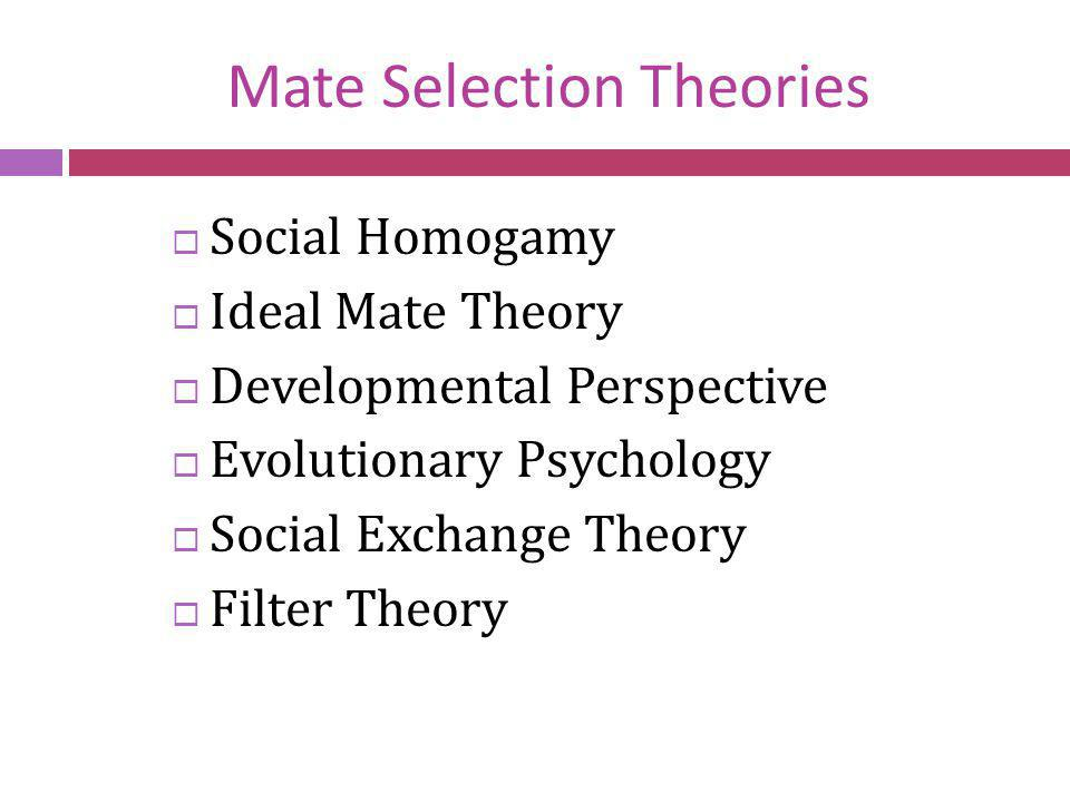 Social Homogamy People are attracted to those from similar backgrounds.