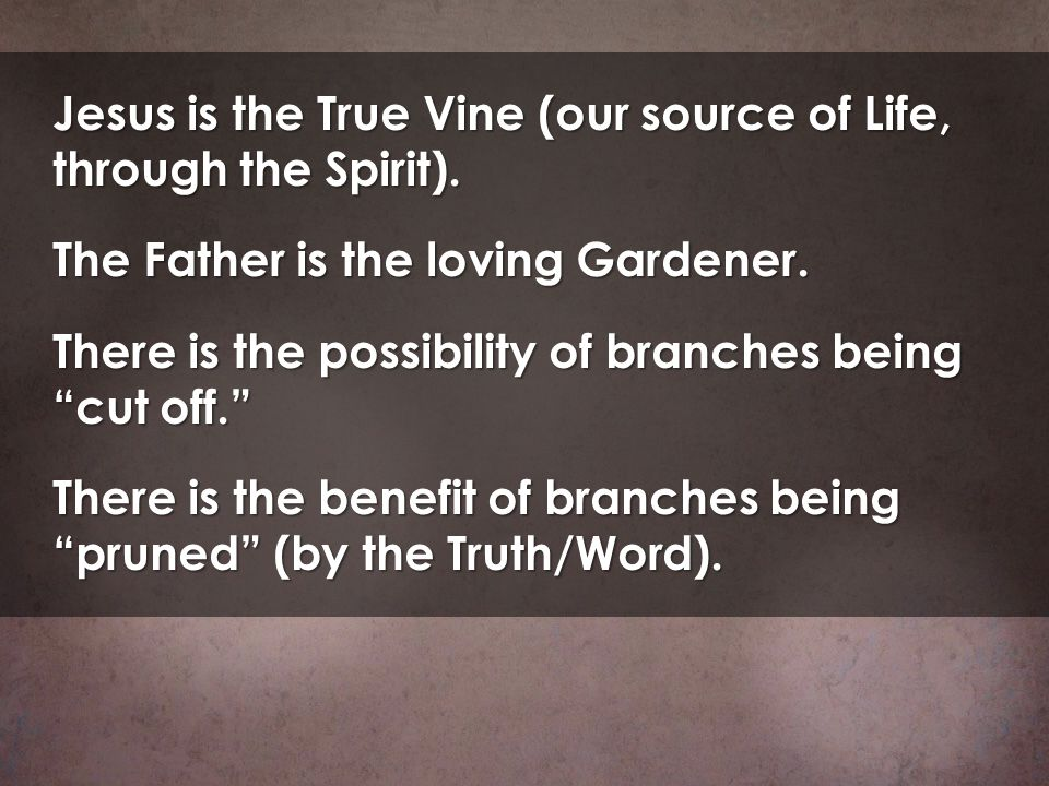 Jesus is the True Vine (our source of Life, through the Spirit). The Father is the loving Gardener. There is the possibility of branches being cut off