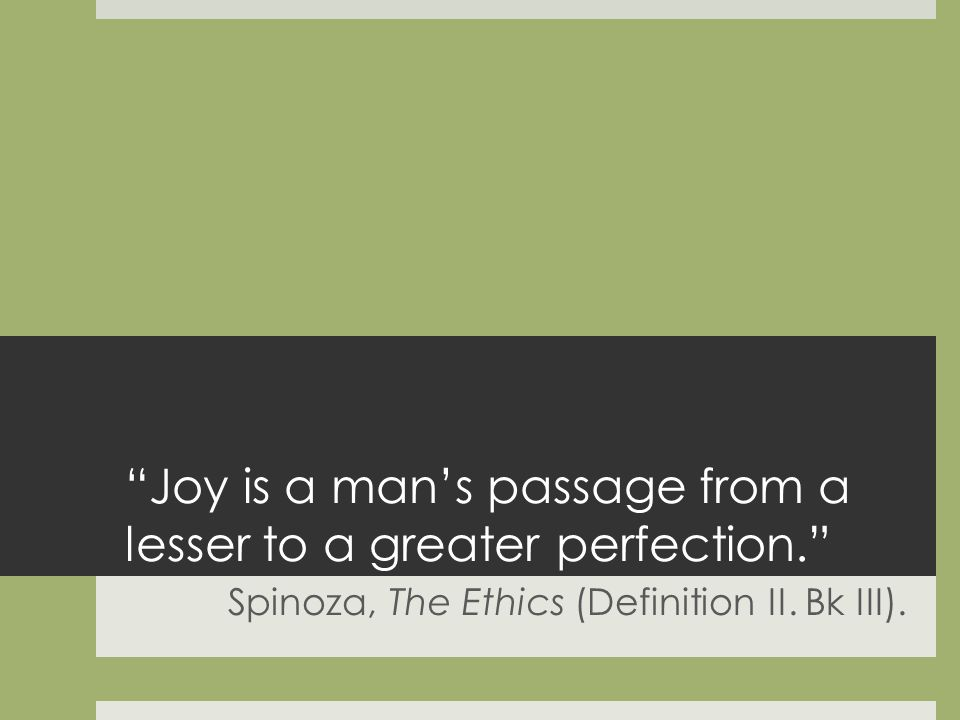 Joy is a mans passage from a lesser to a greater perfection.