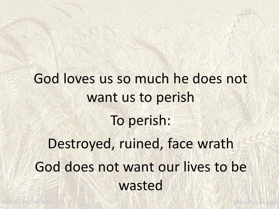 God loves us so much he does not want us to perish To perish: Destroyed, ruined, face wrath God does not want our lives to be wasted