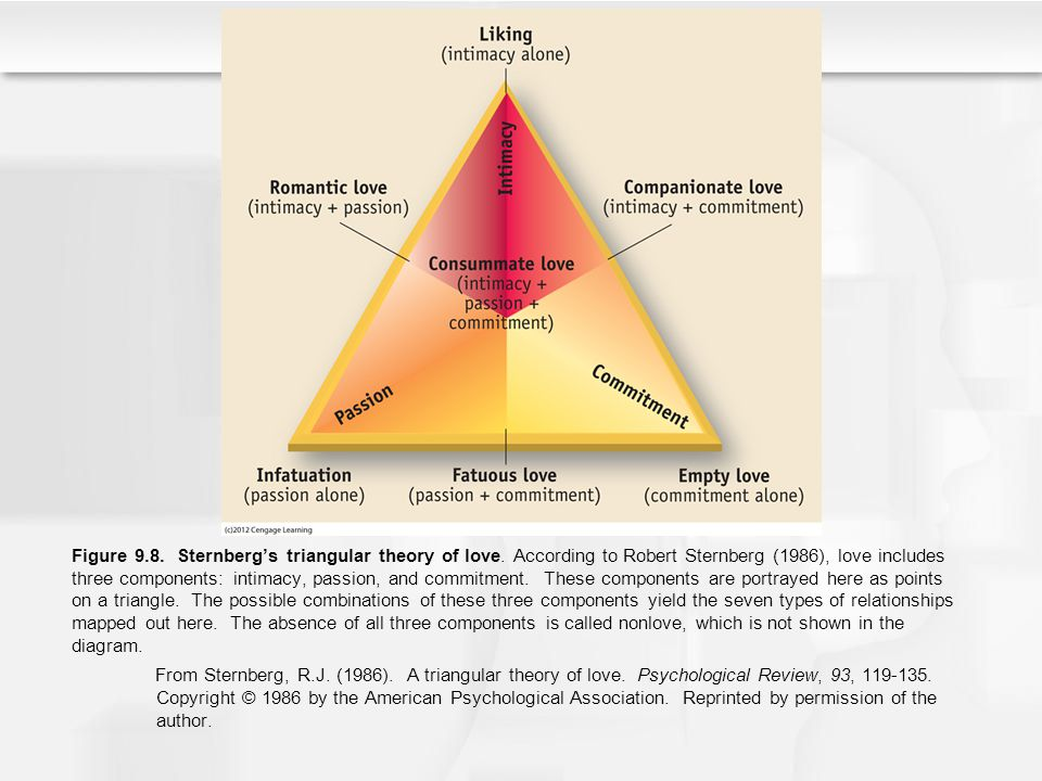 Figure 9.8. Sternbergs triangular theory of love. According to Robert Sternberg (1986), love includes three components: intimacy, passion, and commitm