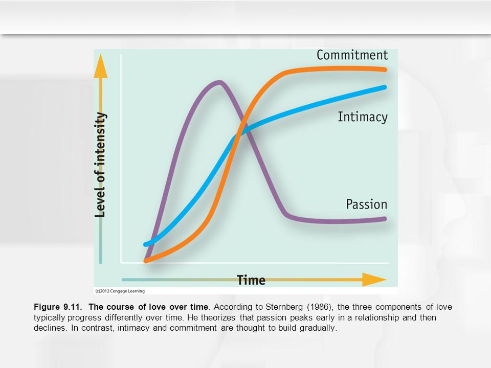 Figure 9.11. The course of love over time. According to Sternberg (1986), the three components of love typically progress differently over time. He th