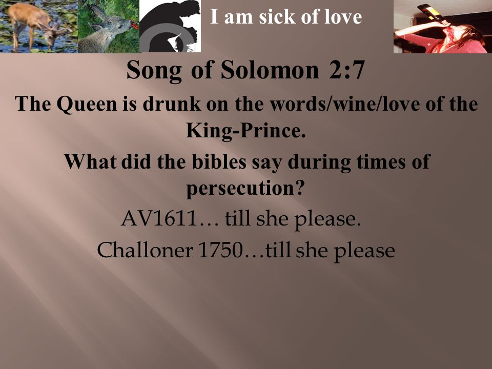 Song of Solomon 2:7 The Queen is drunk on the words/wine/love of the King-Prince.
