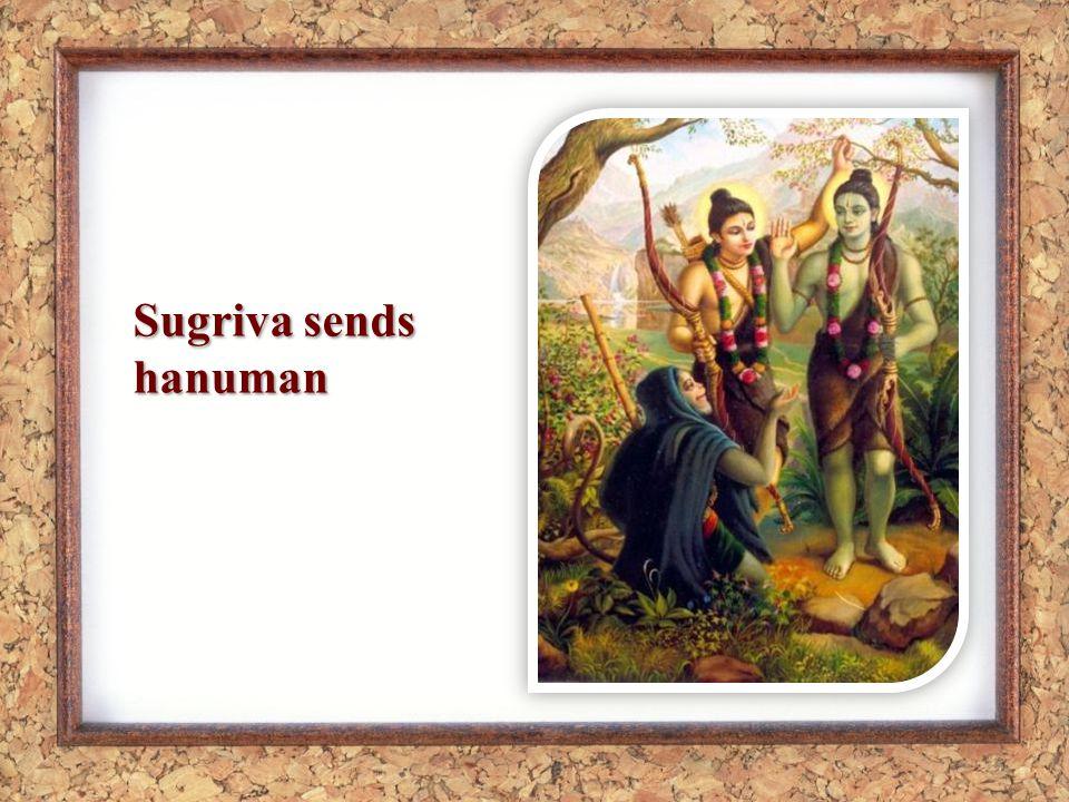 Sugriva sends hanuman