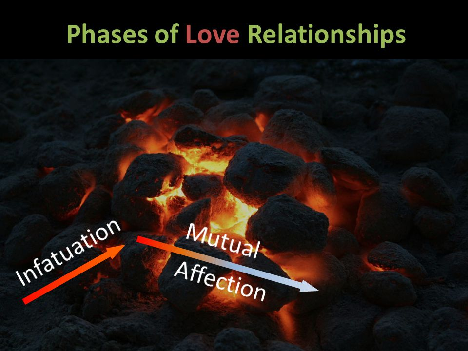 Phases of Love Relationships