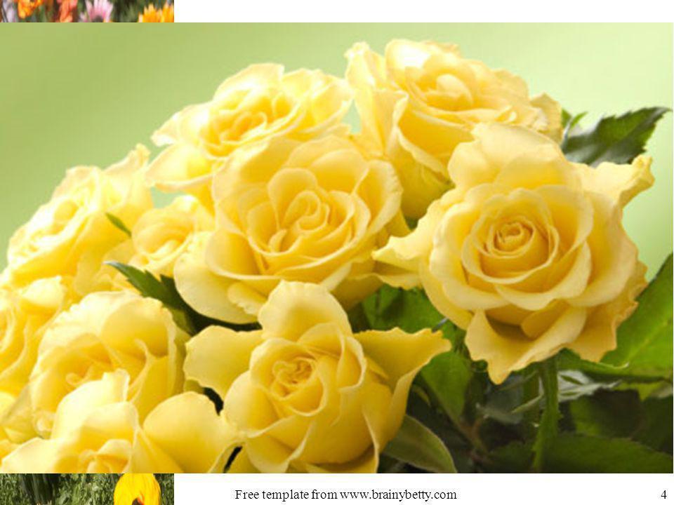 Free template from www.brainybetty.com4