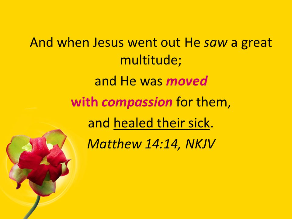And when Jesus went out He saw a great multitude; and He was moved with compassion for them, and healed their sick.