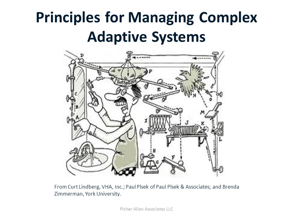 Principles for Managing Complex Adaptive Systems Picher Allan Associates LLC From Curt Lindberg, VHA, Inc.; Paul Plsek of Paul Plsek & Associates; and Brenda Zimmerman, York University.