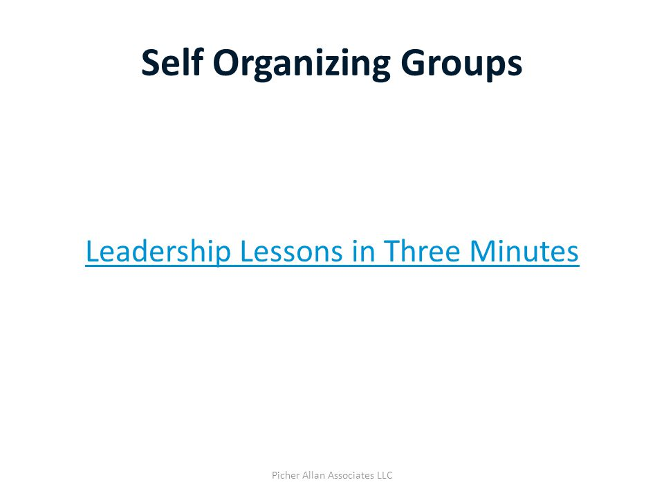 Self Organizing Groups Leadership Lessons in Three Minutes Picher Allan Associates LLC