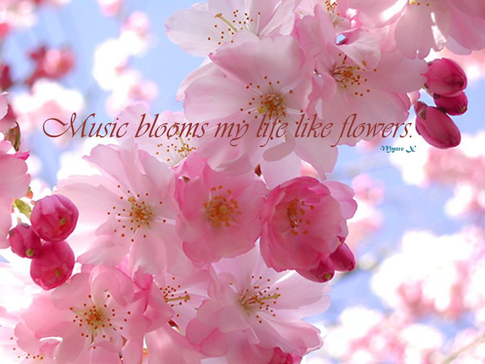 Music blooms my life like flowers. Myme X