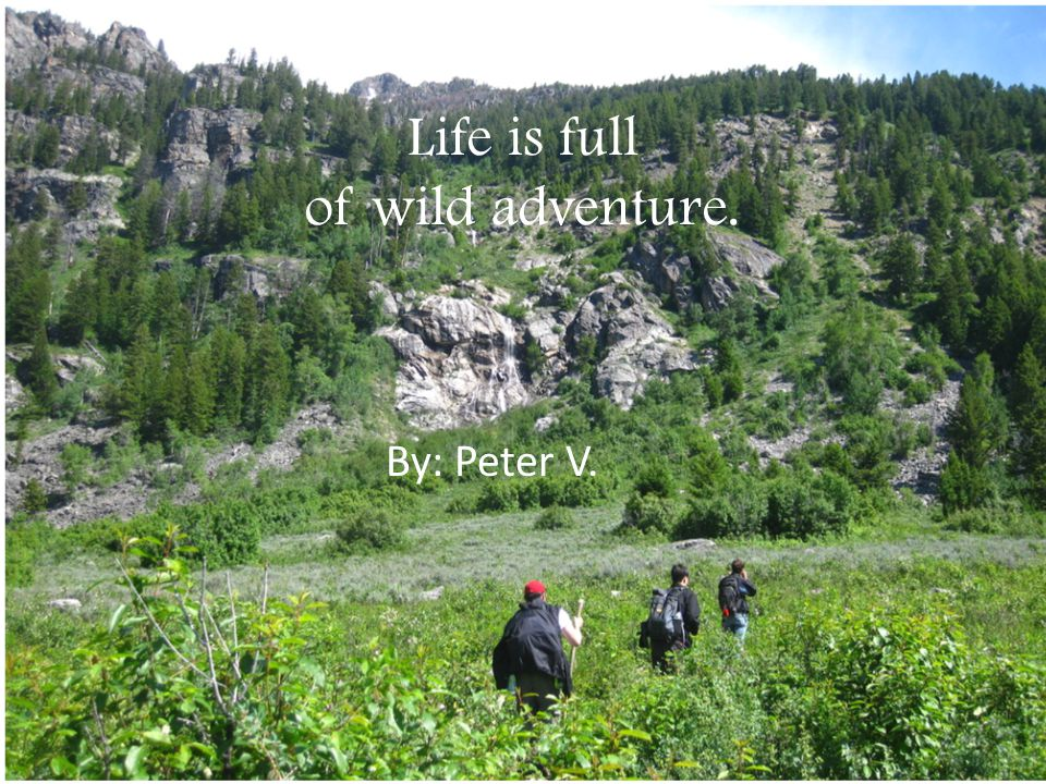 Life is full of wild adventure. By: Peter V.