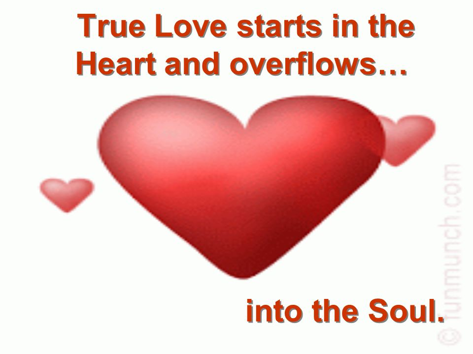 True Love starts in the Heart and overflows… True Love starts in the Heart and overflows… into the Soul.