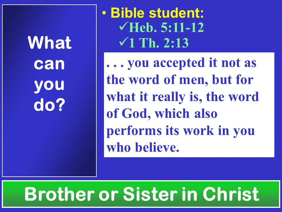 Brother or Sister in Christ What can you do.Heb. 5:11-12 Bible student: 1 Th.