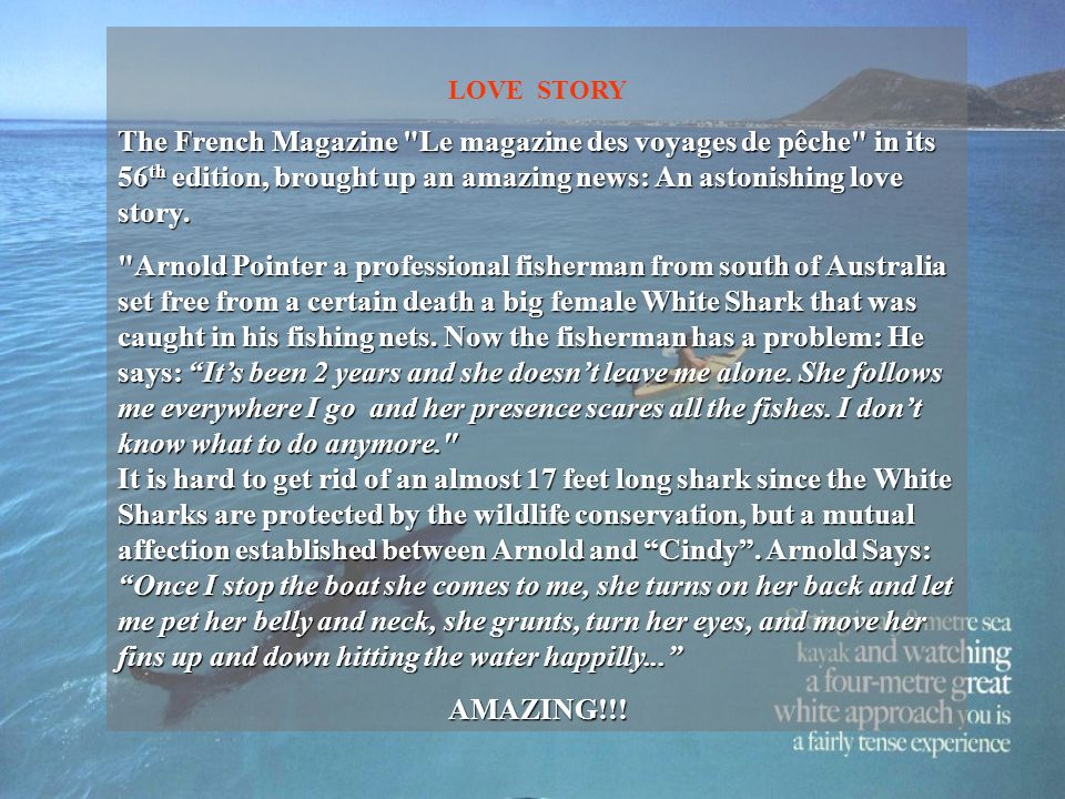 LOVE STORY The French Magazine Le magazine des voyages de pêche in its 56 th edition, brought up an amazing news: An astonishing love story.