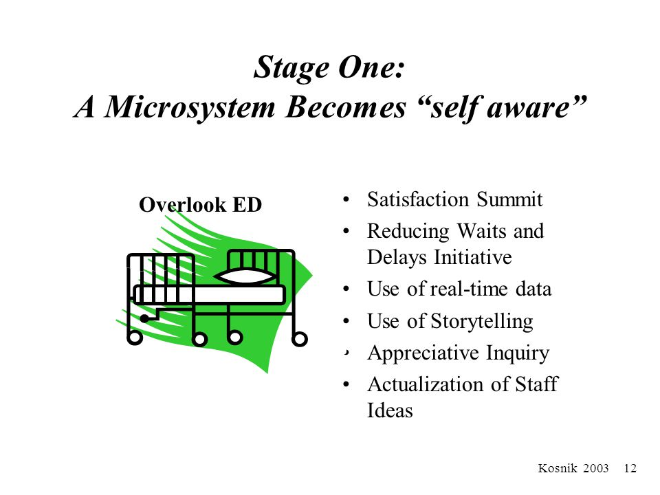Kosnik 2003 11 Field Notes : Stages In Our AHS Experience 1.Self Aware Microsystem (m) 2.Like microsystems (m+m+m…) 3.Unlike microsystems (m+m+m…) 4.M