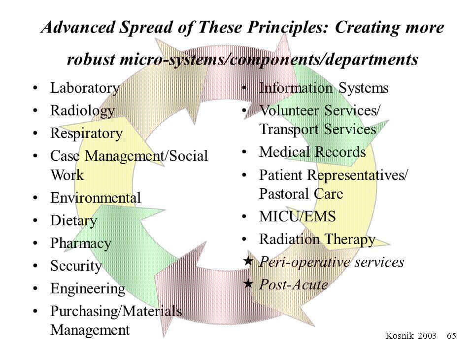 Kosnik 2003 64 Example: Matching Capacity to Demand Management Among Macrosystems (M+M+M…)