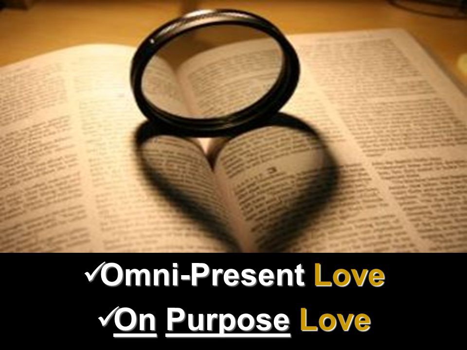On Purpose Love On Purpose Love