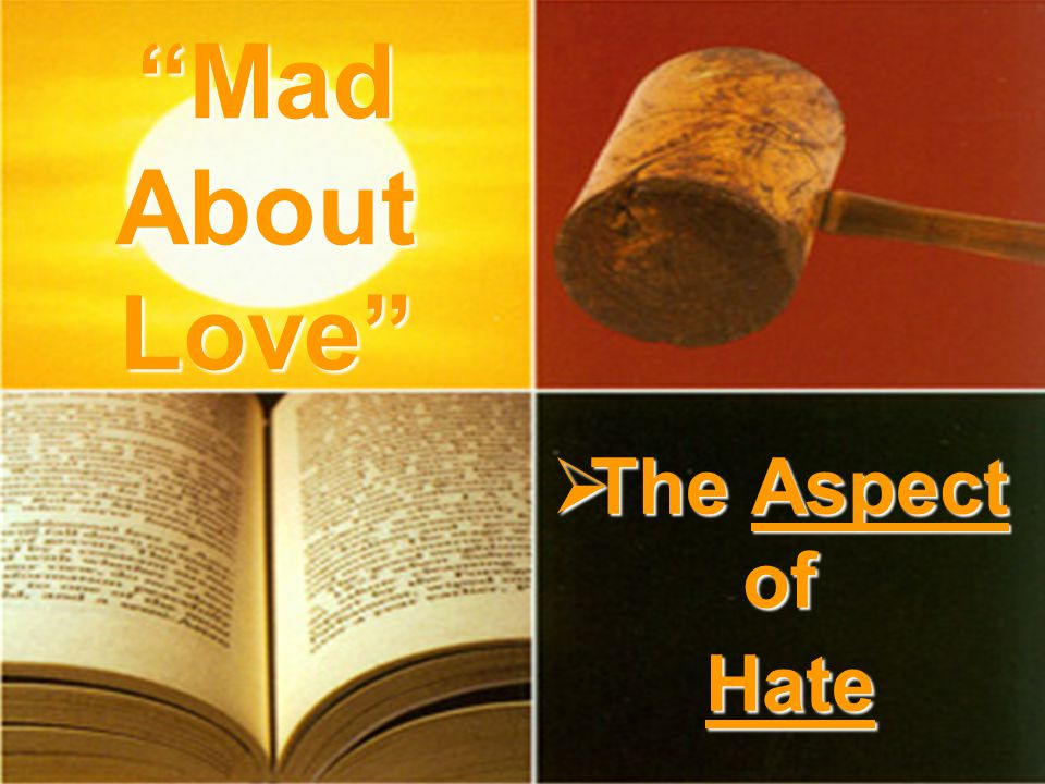 The Aspect of Hate The Aspect of Hate Mad About Love