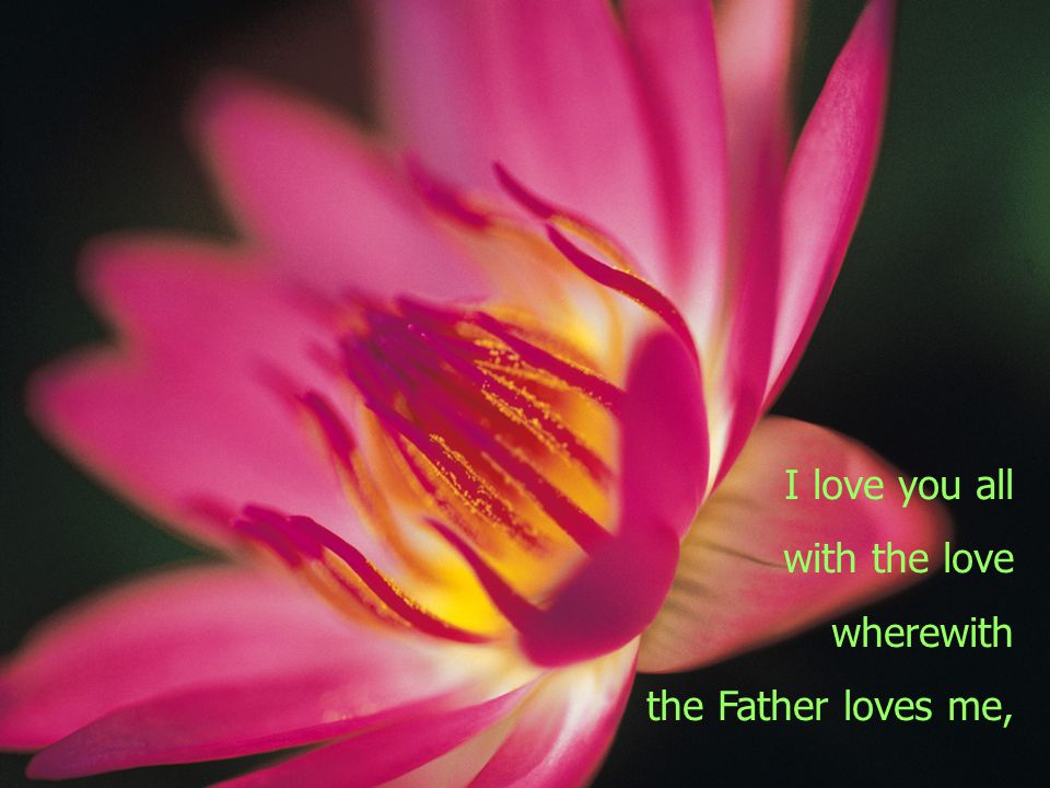 Then he gave this new commandment: You are to love all men as I have loved you.