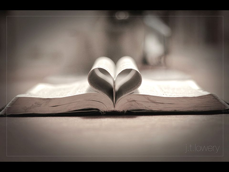 John 21.15-17 15 When they had finished eating, Jesus said to Simon Peter, Simon son of John, do you truly love me more than these? Yes, Lord, he said, you know that I love you. Jesus said, Feed my lambs.