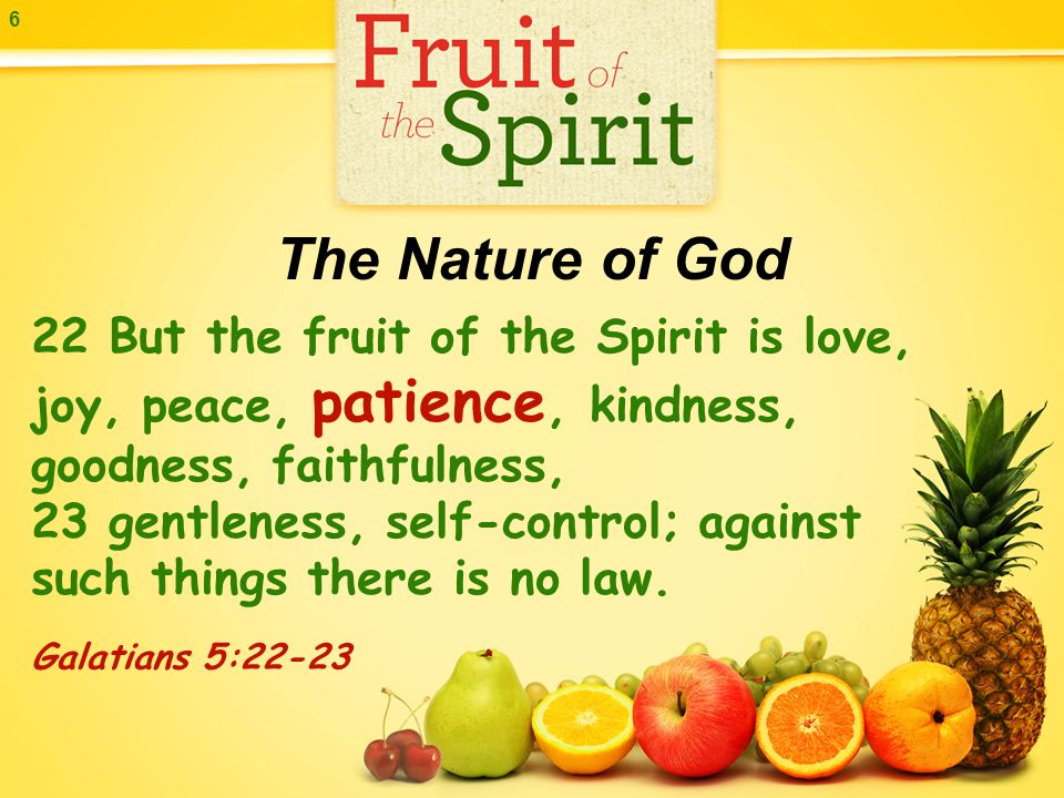 6 22 But the fruit of the Spirit is love, joy, peace, patience, kindness, goodness, faithfulness, 23 gentleness, self-control; against such things there is no law.
