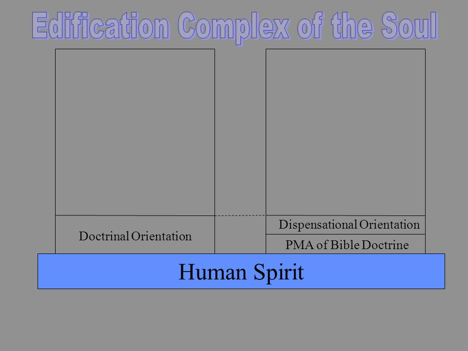 Human Spirit PMA of Bible Doctrine Dispensational Orientation Doctrinal Orientation