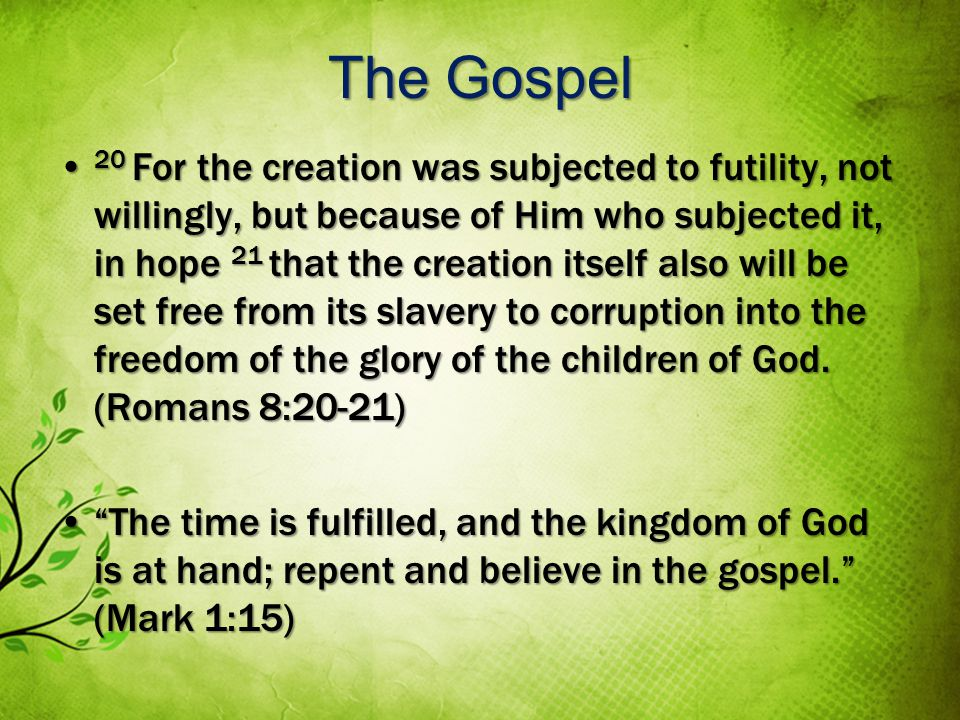 The Gospel 20 For the creation was subjected to futility, not willingly, but because of Him who subjected it, in hope 21 that the creation itself also will be set free from its slavery to corruption into the freedom of the glory of the children of God.