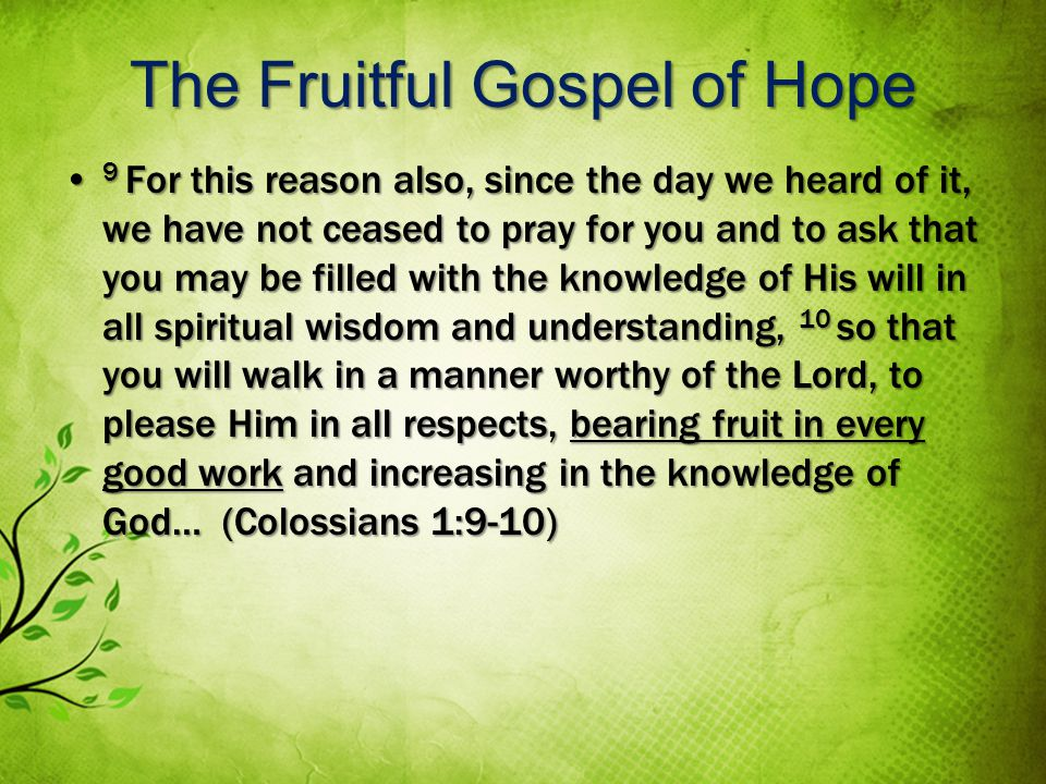 The Fruitful Gospel of Hope 9 For this reason also, since the day we heard of it, we have not ceased to pray for you and to ask that you may be filled with the knowledge of His will in all spiritual wisdom and understanding, 10 so that you will walk in a manner worthy of the Lord, to please Him in all respects, bearing fruit in every good work and increasing in the knowledge of God… (Colossians 1:9-10) 9 For this reason also, since the day we heard of it, we have not ceased to pray for you and to ask that you may be filled with the knowledge of His will in all spiritual wisdom and understanding, 10 so that you will walk in a manner worthy of the Lord, to please Him in all respects, bearing fruit in every good work and increasing in the knowledge of God… (Colossians 1:9-10)