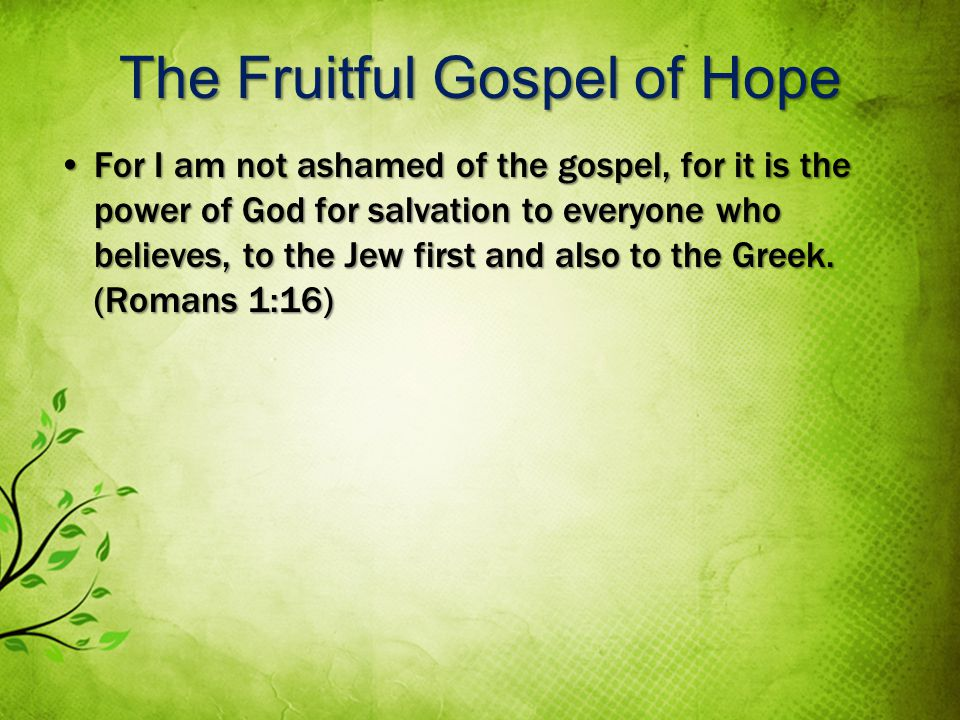 The Fruitful Gospel of Hope For I am not ashamed of the gospel, for it is the power of God for salvation to everyone who believes, to the Jew first and also to the Greek.