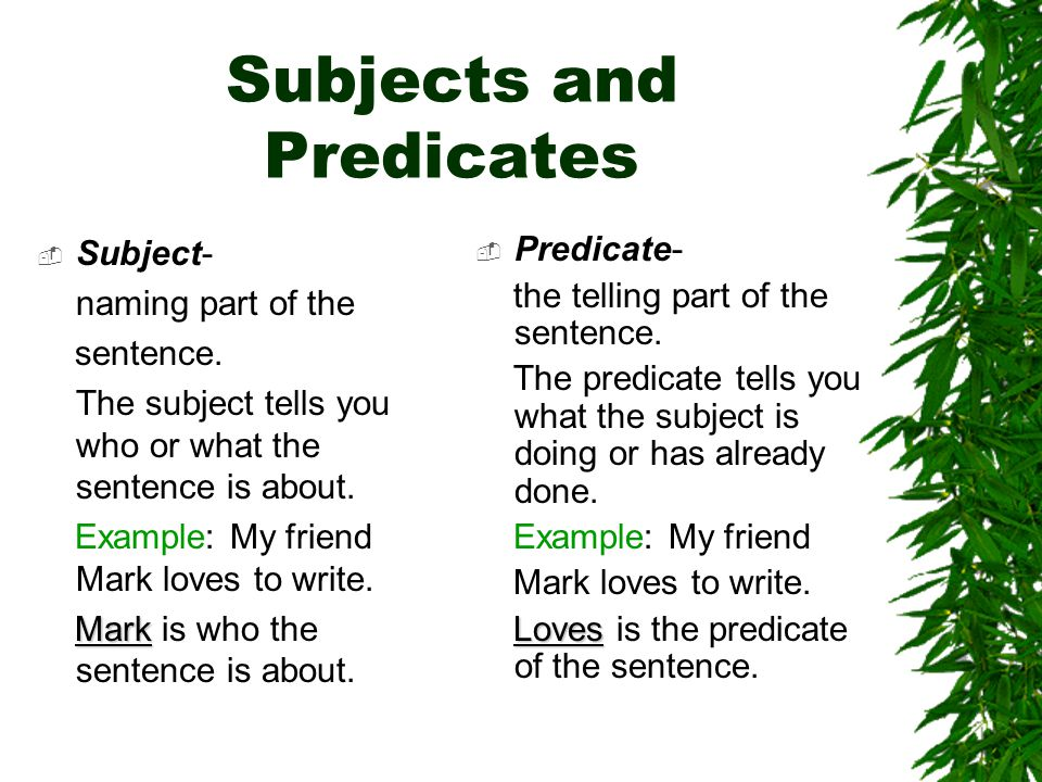 Subjects and Predicates Subject- naming part of the sentence.