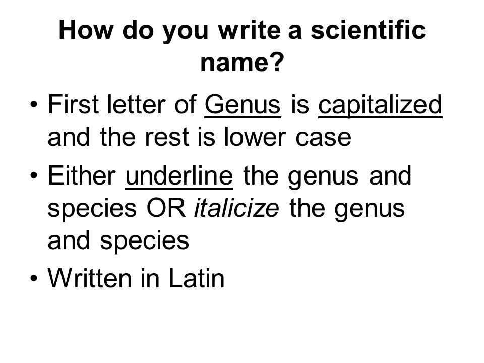 How do you write a scientific name? First letter of Genus is capitalized and the rest is lower case Either underline the genus and species OR italiciz