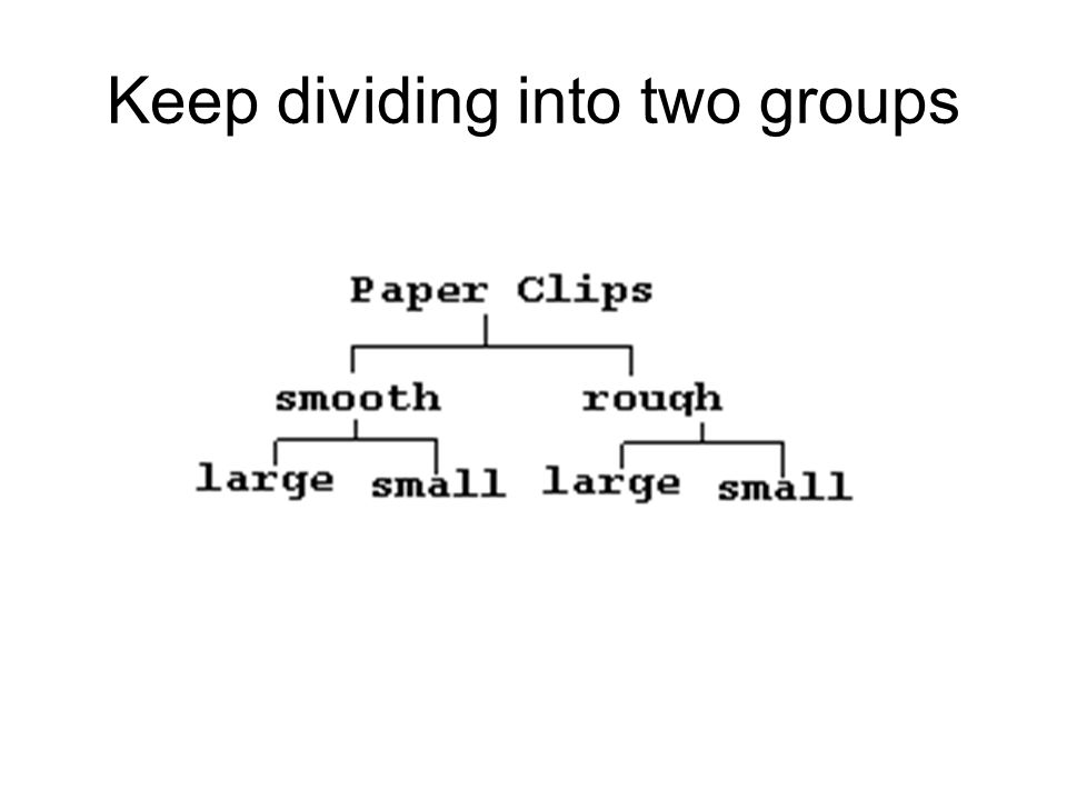 Keep dividing into two groups