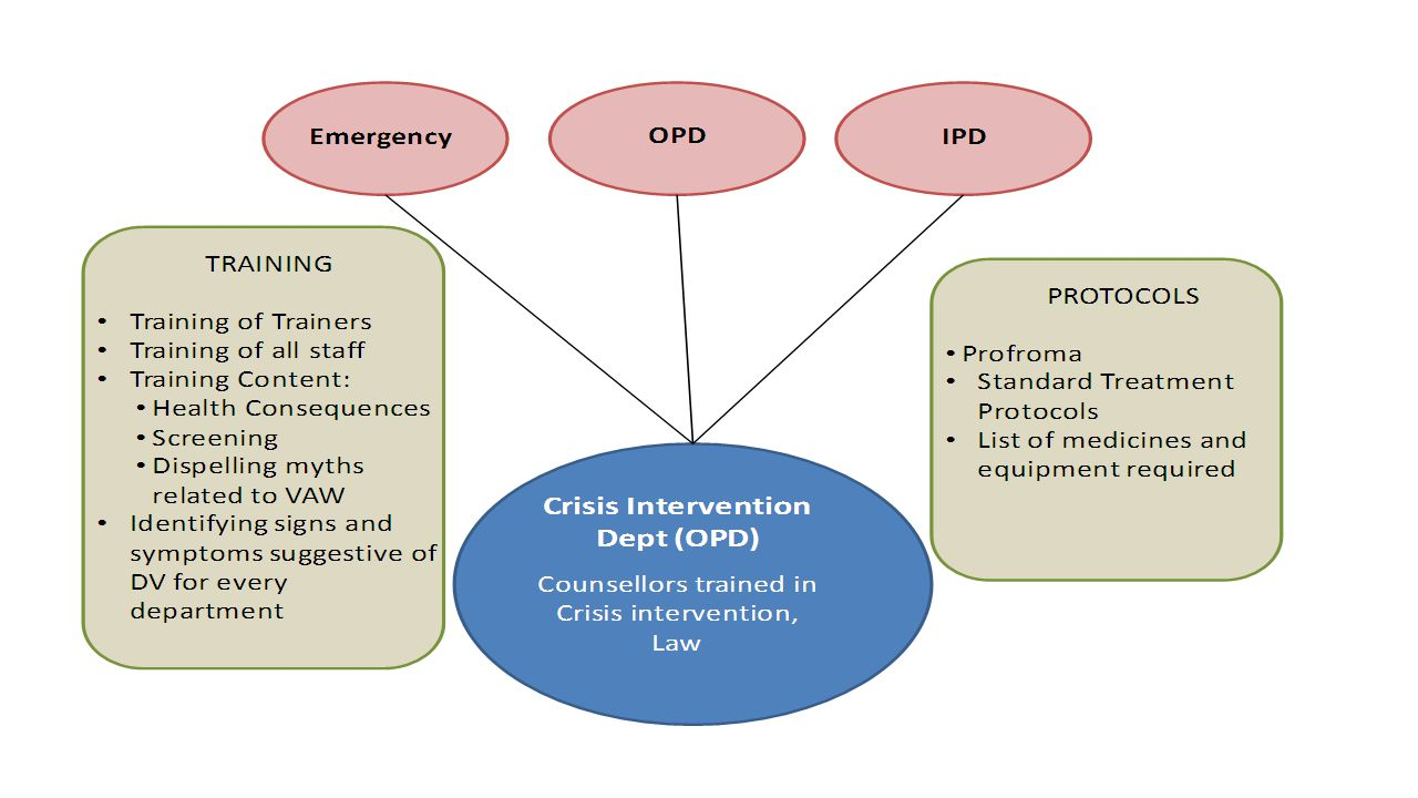 Protocols for management of cases Protocols for documentation and evidence collection in cases of sexual violence Standard treatment guidelines for provision of care such as first aid, emergency contraception, access to abortion care, treatment for STIs.