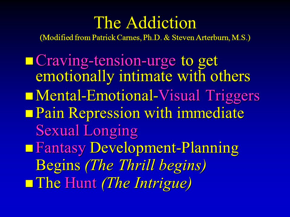 The Addiction (Modified from Patrick Carnes, Ph.D.