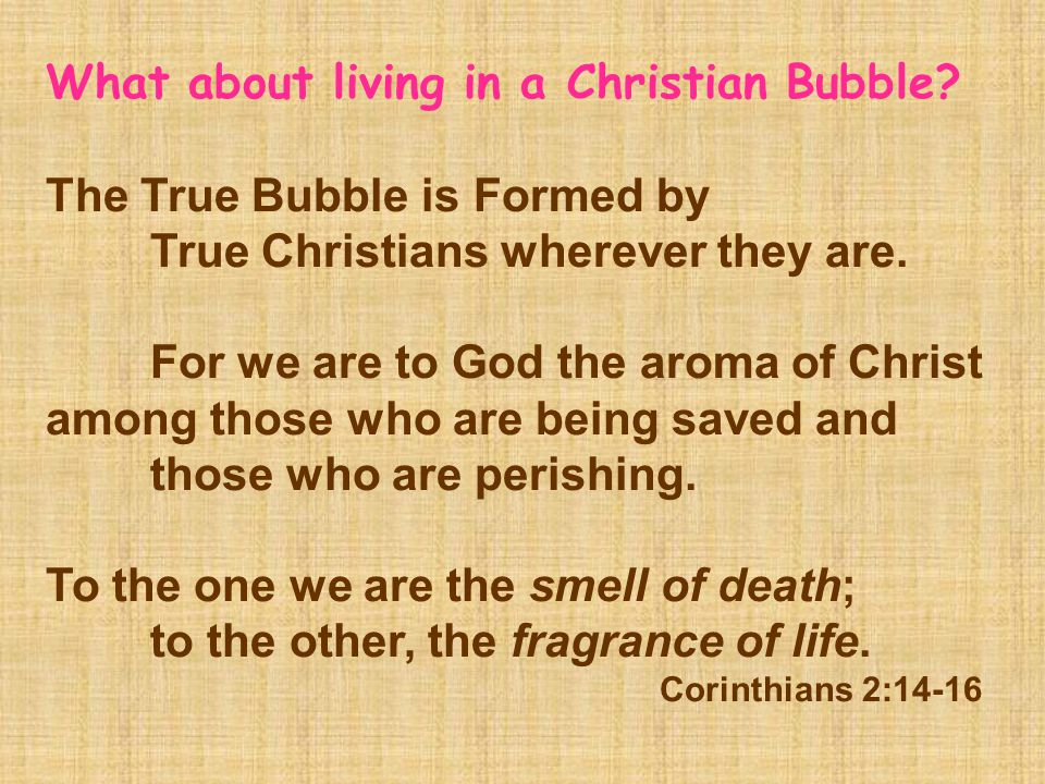 What about living in a Christian Bubble? The True Bubble is Formed by True Christians wherever they are. For we are to God the aroma of Christ among t