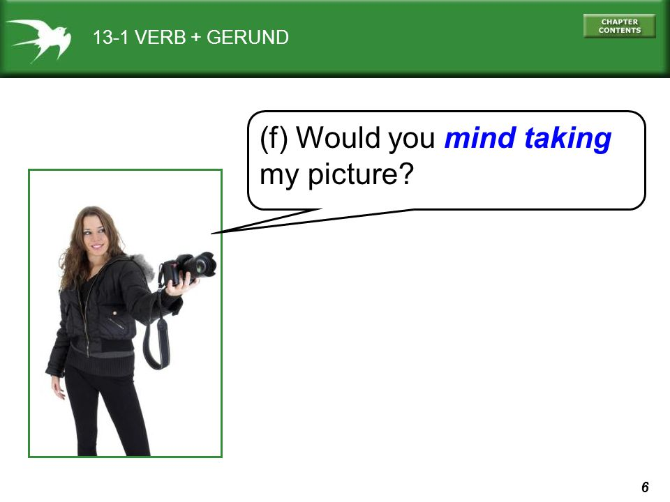 6 13-1 VERB + GERUND (f) Would you mind taking my picture?
