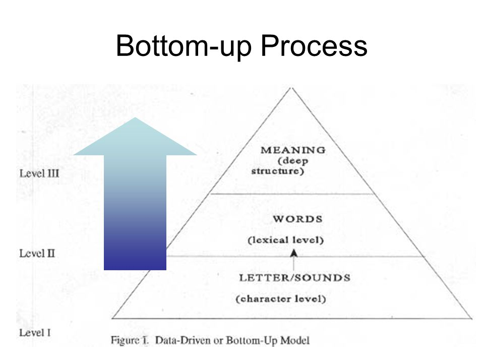 Bottom-up Process