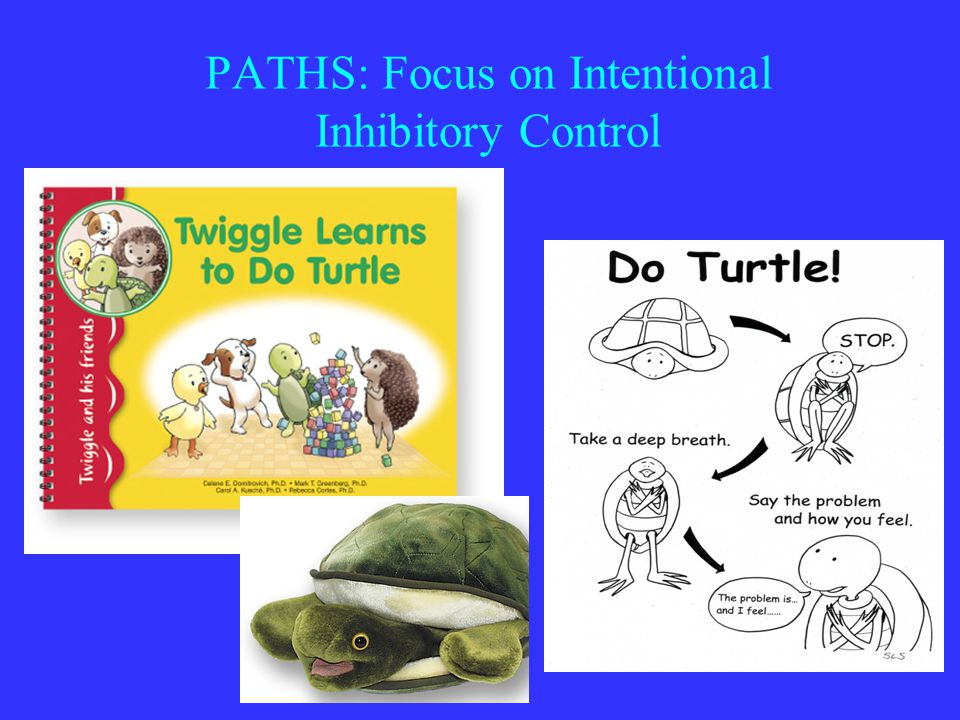 PATHS: Focus on Intentional Inhibitory Control