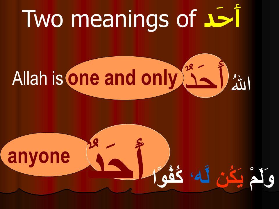 وَلَمْ يَكُن لَّه ، كُفُوًا أَحَدٌ اللهُ أَحَدٌ Allah is one and only Two meanings of أَحَد