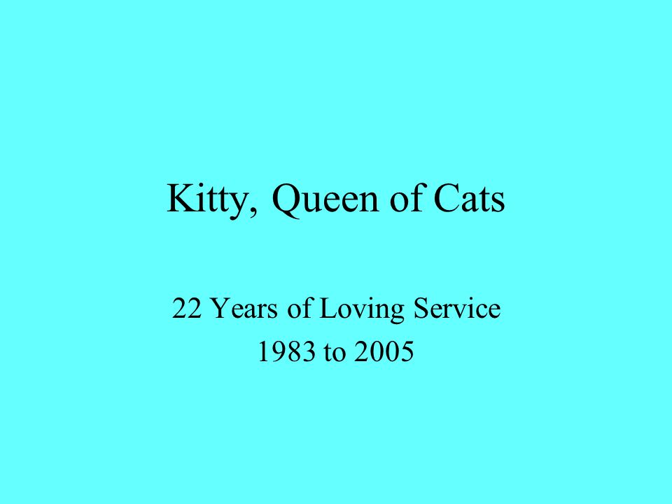 Kitty, Queen of Cats 22 Years of Loving Service 1983 to 2005