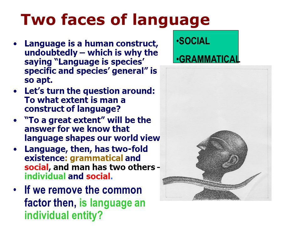 Two faces of language Language is a human construct, undoubtedly – which is why the saying Language is species specific and species general is so apt.