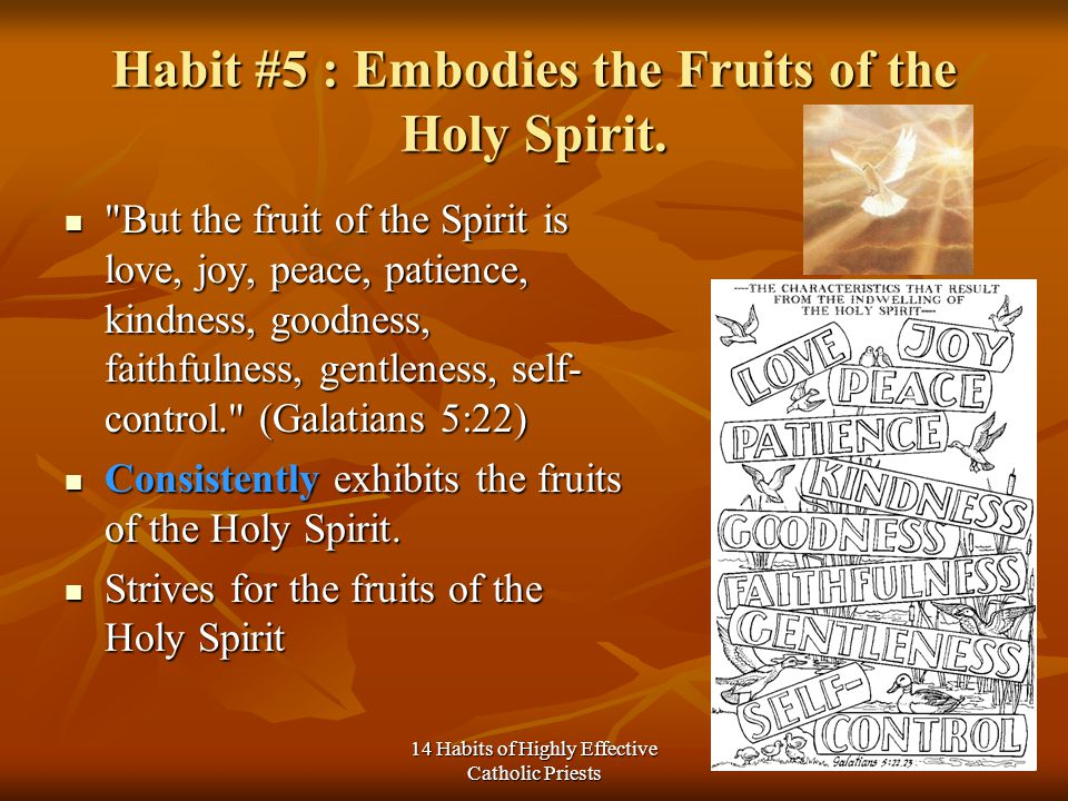 14 Habits of Highly Effective Catholic Priests Habit #5 : Embodies the Fruits of the Holy Spirit.