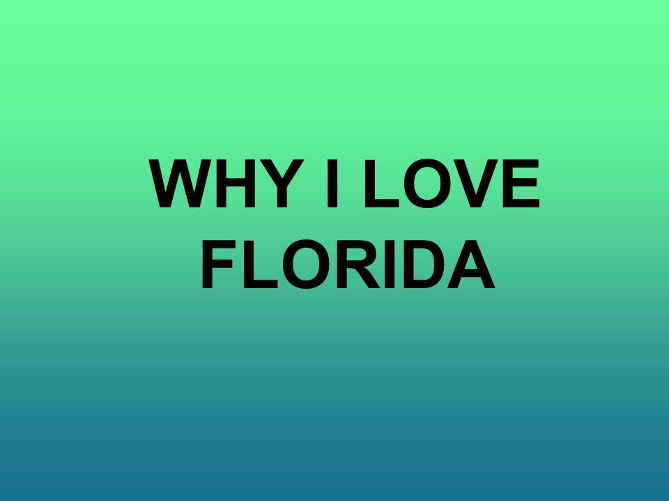 WHY I LOVE FLORIDA