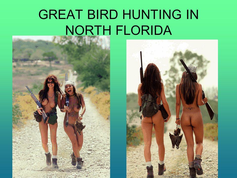 GREAT BIRD HUNTING IN NORTH FLORIDA