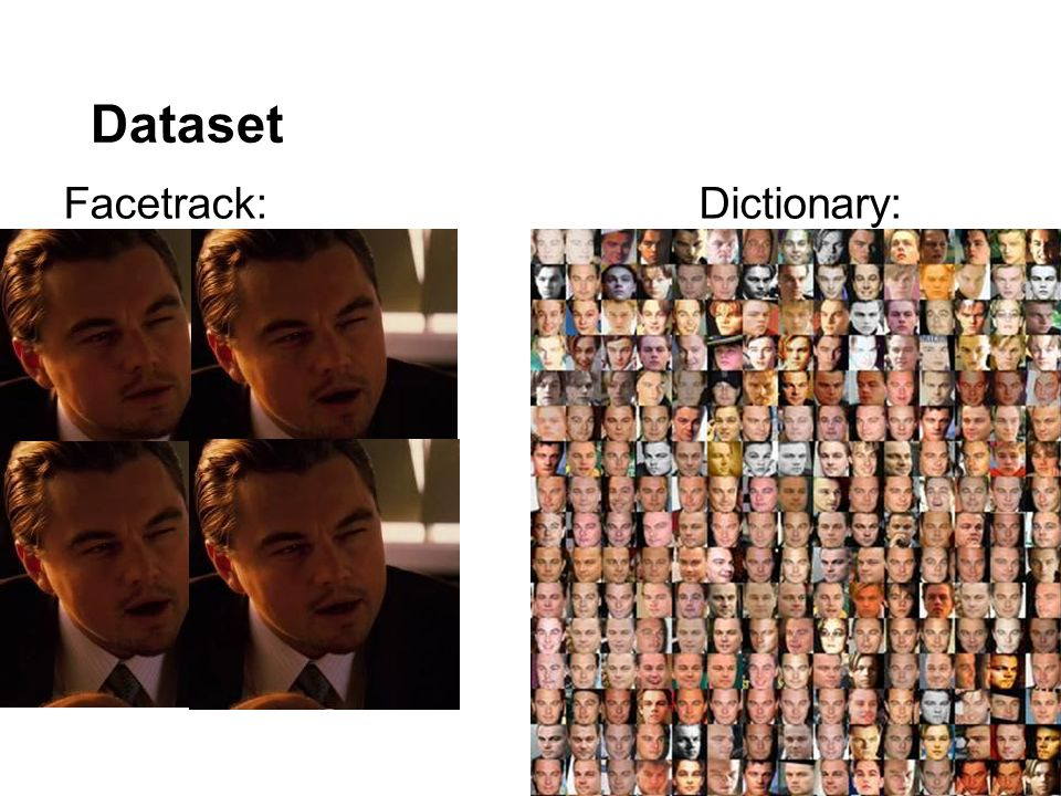 Dataset Facetrack:Dictionary: